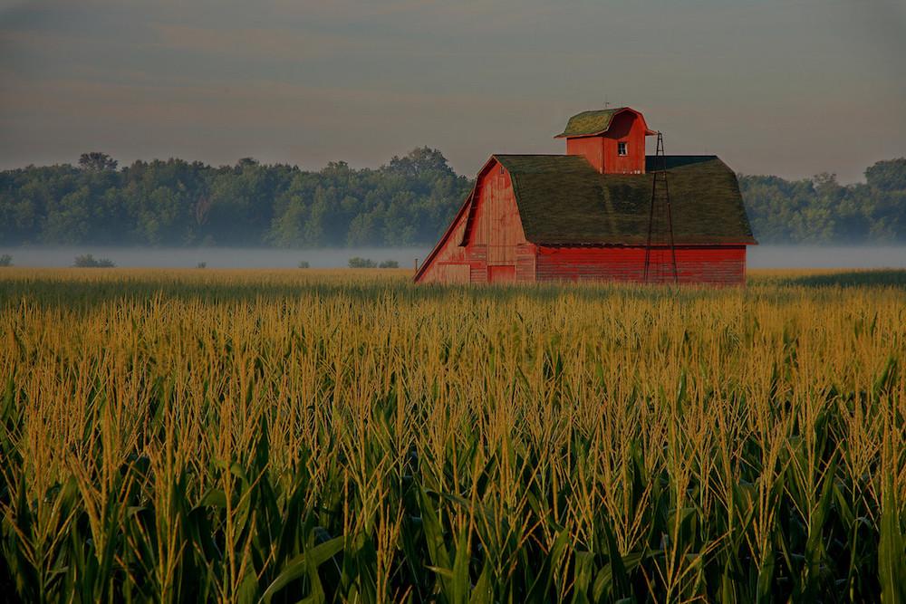 farm and crop insurance in Casa Grande STATE | Steger Insurance Agency